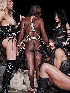 Travestis Punishers 2