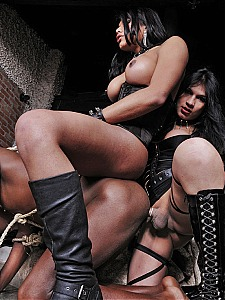 Travestis Punishers 8