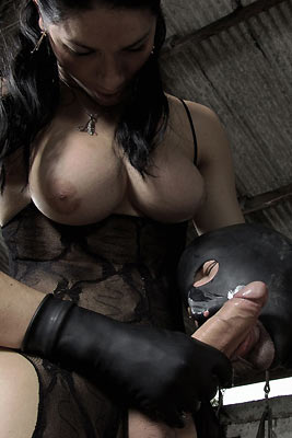 Domination - Shemales Time - Porn videos